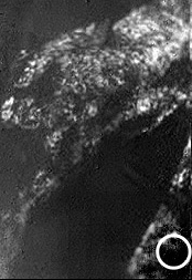 Crédits : ESA/NASA/JPL/University of Arizona
