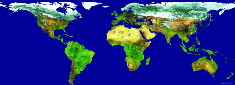Plant cover seen by the vegetation instrument ; credits CNES