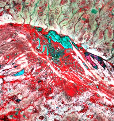 Image SPOT 5 multispectrale à haute résolution spatiale des mares dans la région sahélienne du Ferlo. La végétation (en rouge) est facilement distinguable des zones humides (bleu sombre à cyan). CNES 2003, Distribution Spot Image SA.