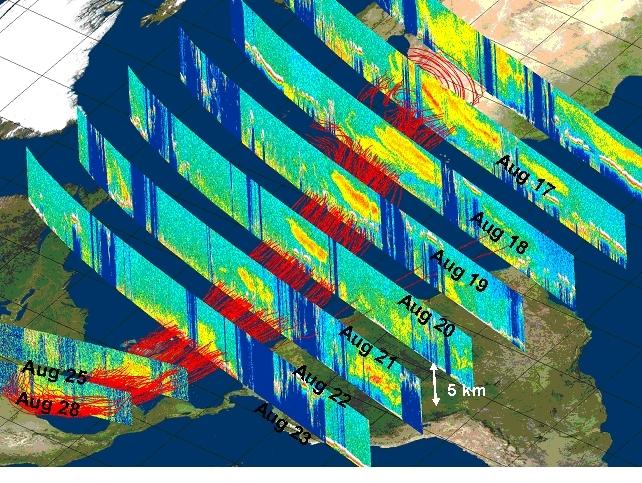Migration de sable depuis le Sahara du 17 au 28 août 2006 (Crédit Chip Trepte , NASA).