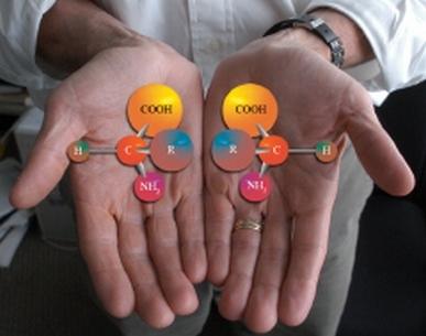 Les 2 formes L et D d'une molécule chirale. Crédits : Argonne National Laboratory.