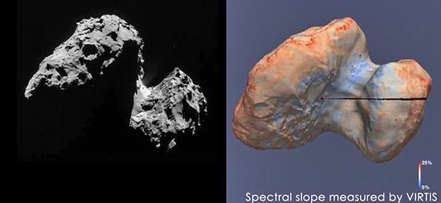 La composition de la surface de la comète est très homogène avec une petite différence au niveau de la région du cou qui contiendrait peut-être de la glace d'eau. Crédits : F. Capaccioni et al.