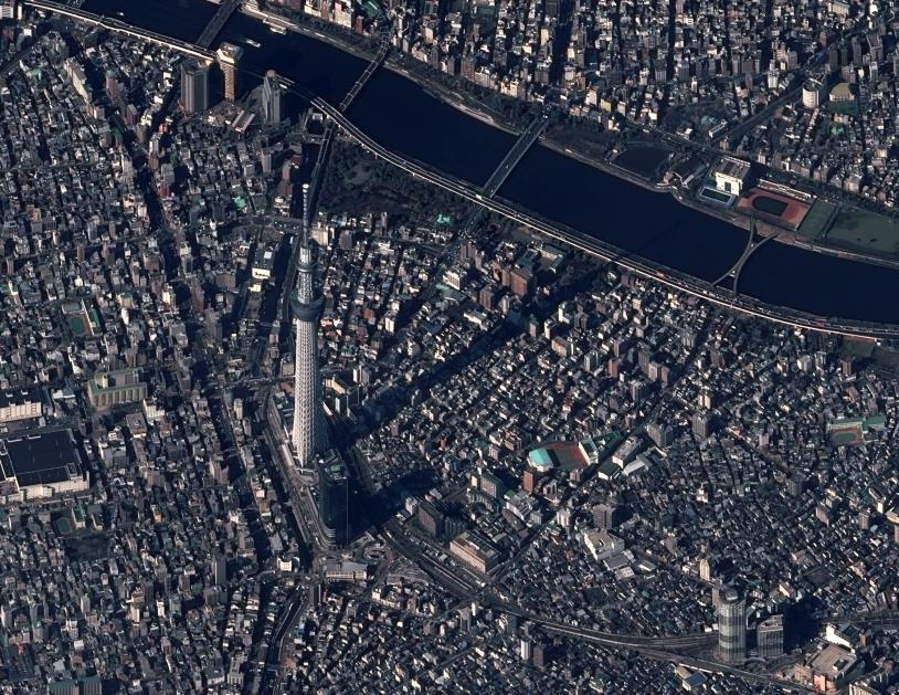 L'Arbre du Ciel de Tokyo par Pléiades 1A